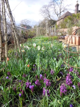 The Cutting Garden, filling up already