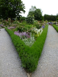 Lavender-bounded beds