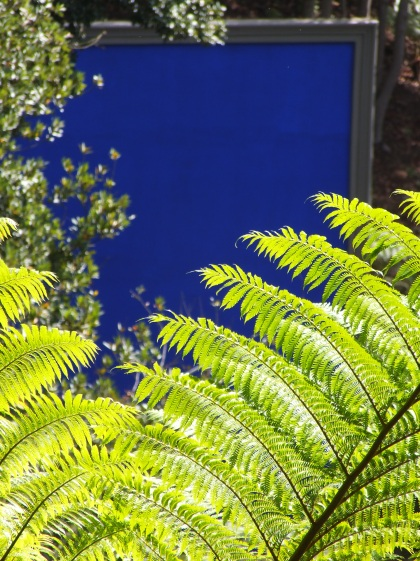 fern blue background