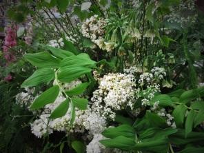 green white spring mix