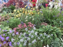 Mixed Gardeners' World Live
