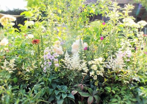 mixed planting soft pastel