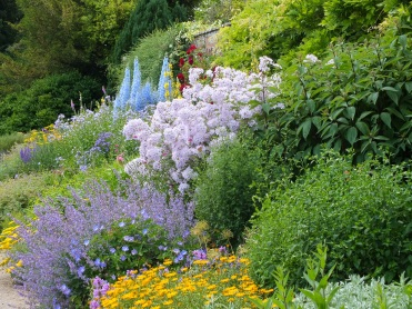waterperry gardens mixed border blue soft yellow