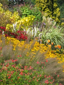 wisley late summer mixed border
