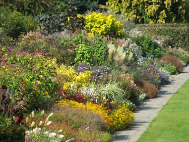 wisley mixed late summer border 2