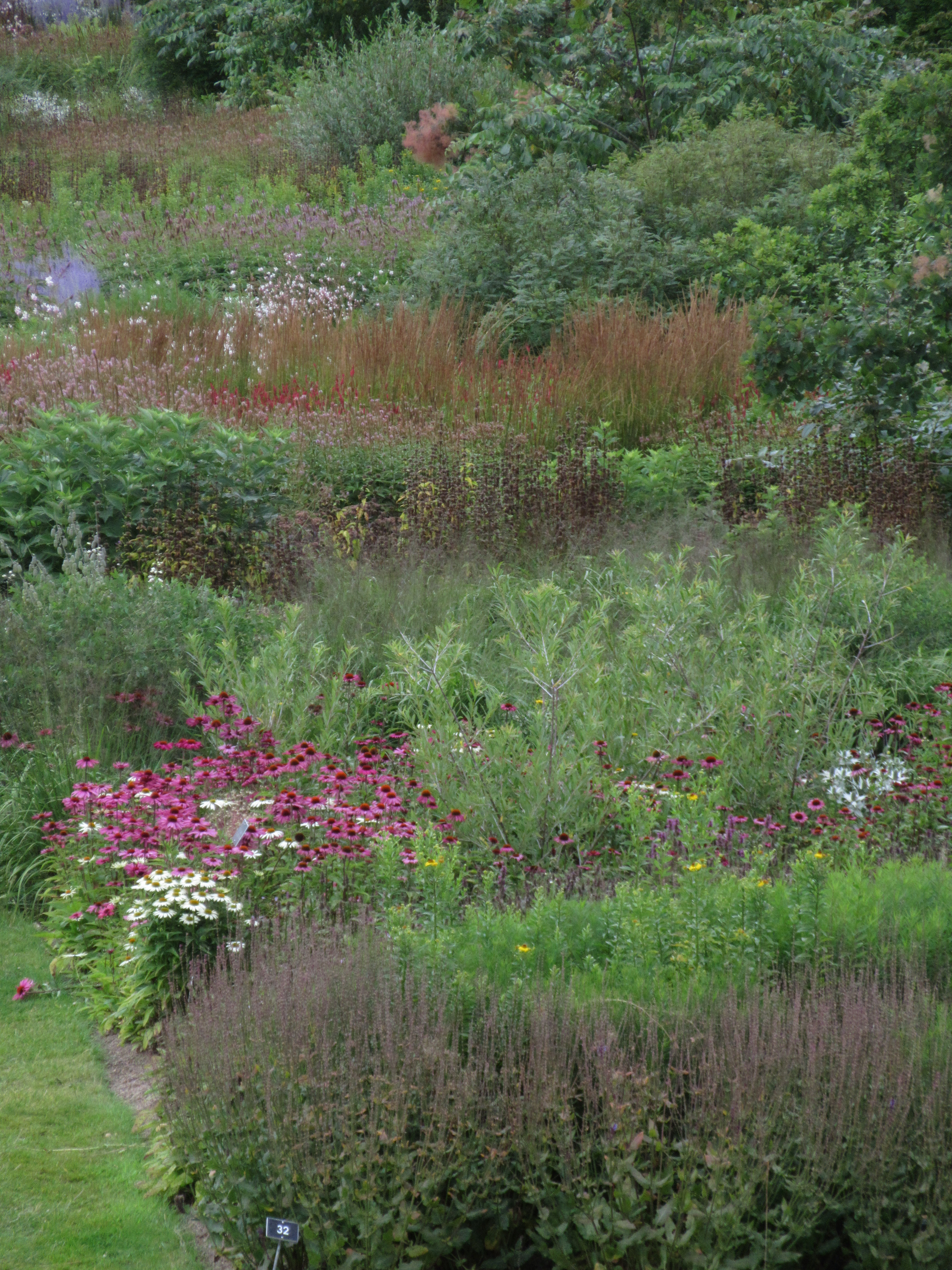 The glasshouse borders at rhs wisley masterly and painterly still from a vantage at the top of the mount looking down towards the lake and glasshouse these double borders mix perennials and grasses with stands of shrubs workwithnaturefo