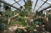 Princess of Wales Conservatory, Kew