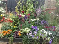 A cottage garden on wheels