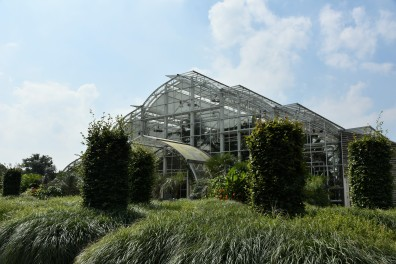 and reaching the glasshouse