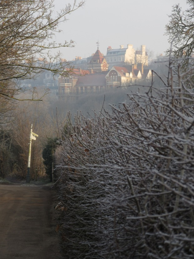 newletter-frosted-church-lane