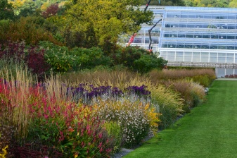 The Glasshouse Borders