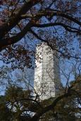 The Pagoda under wraps